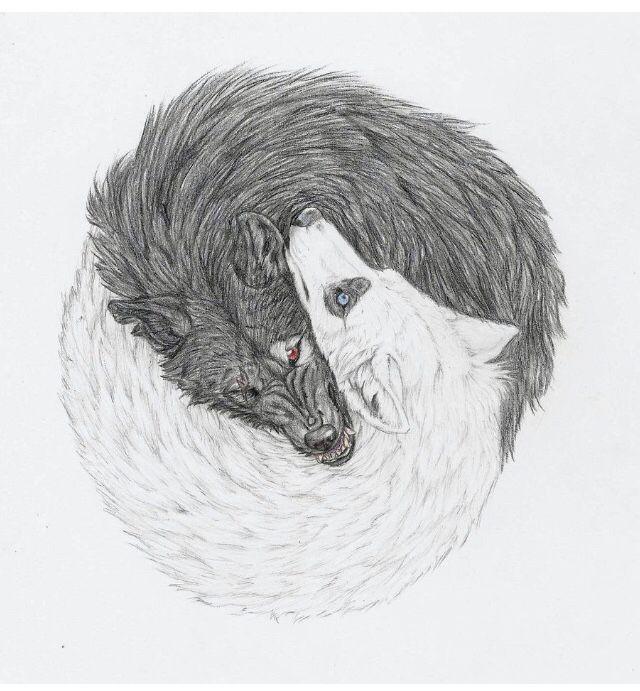 Native American Proverb Tattoo Yin Yang Wolf Drawing Art Wolf Tattoos