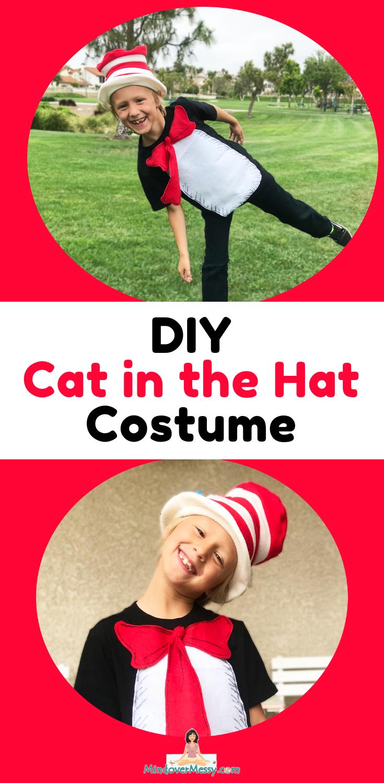 DIY Cat in the Hat Costume in a Pinch! Diy halloween