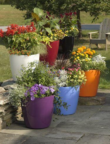 31266b10cdbb25b2b433f11183906c89 - Gardener's Supply Company Self Watering Pot Reservoir
