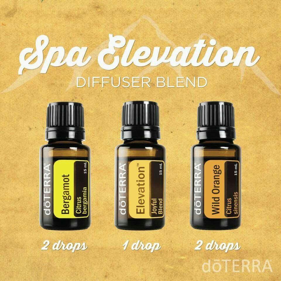 Spa Elevation