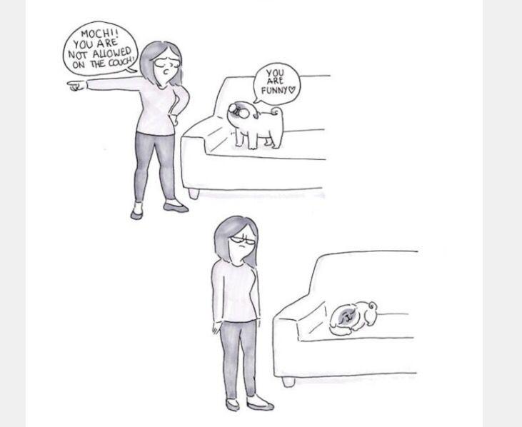Living With A Pug Funny Pugs Pug Cartoon Me My Dog