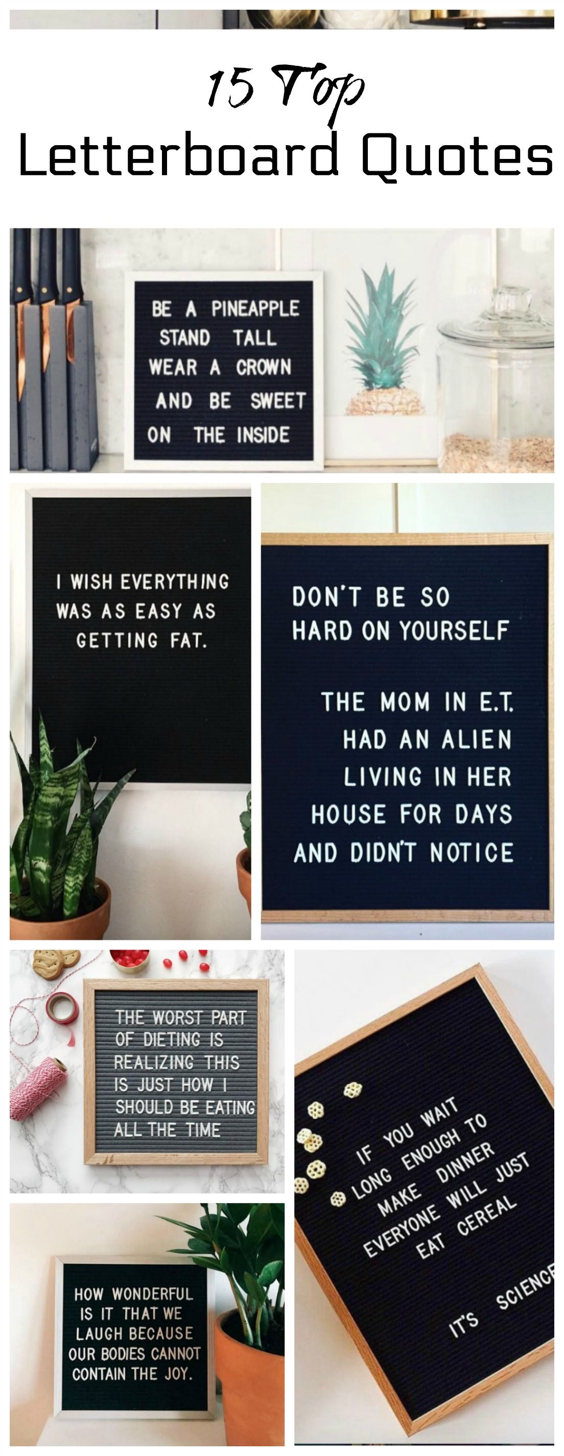 Letterboard Quotes Top 15 Funny and Inspirational