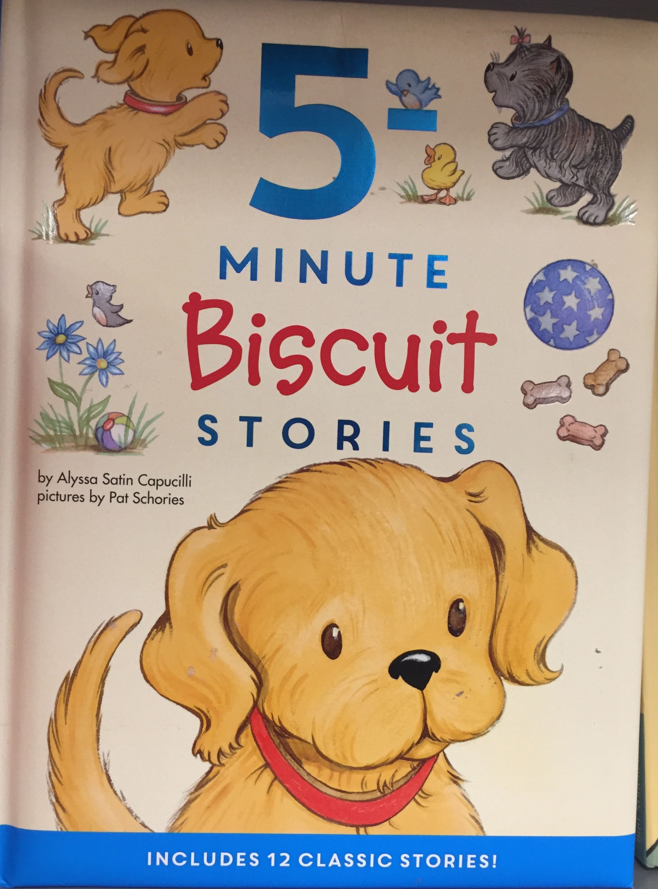 5 Minute Biscuit Stories Book Perfect For Bedtime Dog Books