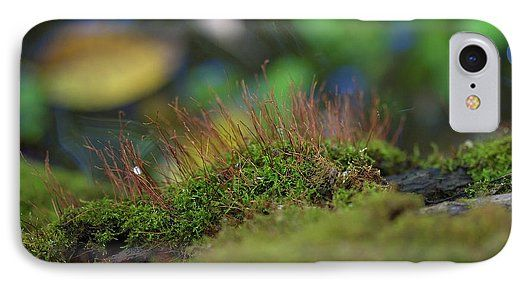 Sky Is The Limit Images IPhone 7 Case featuring the photograph Moss Style by Becca Buecher
