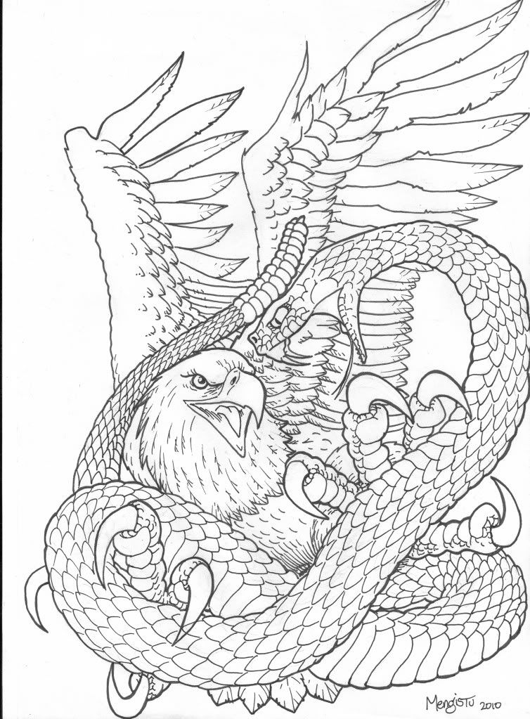 Realistic Eagle Drawing Snake Vs Eagle Picture Snake Coloring