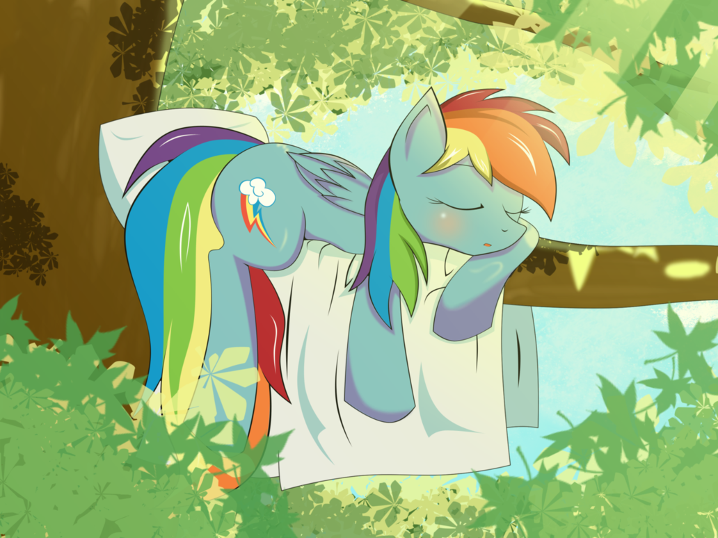 Sleeping Dash By Zzvinniezz On Deviantart Mlp Pinterest