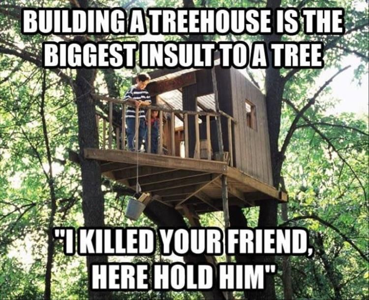 Building A Treehouse Is The Biggest Insult To Tree I Killed Your