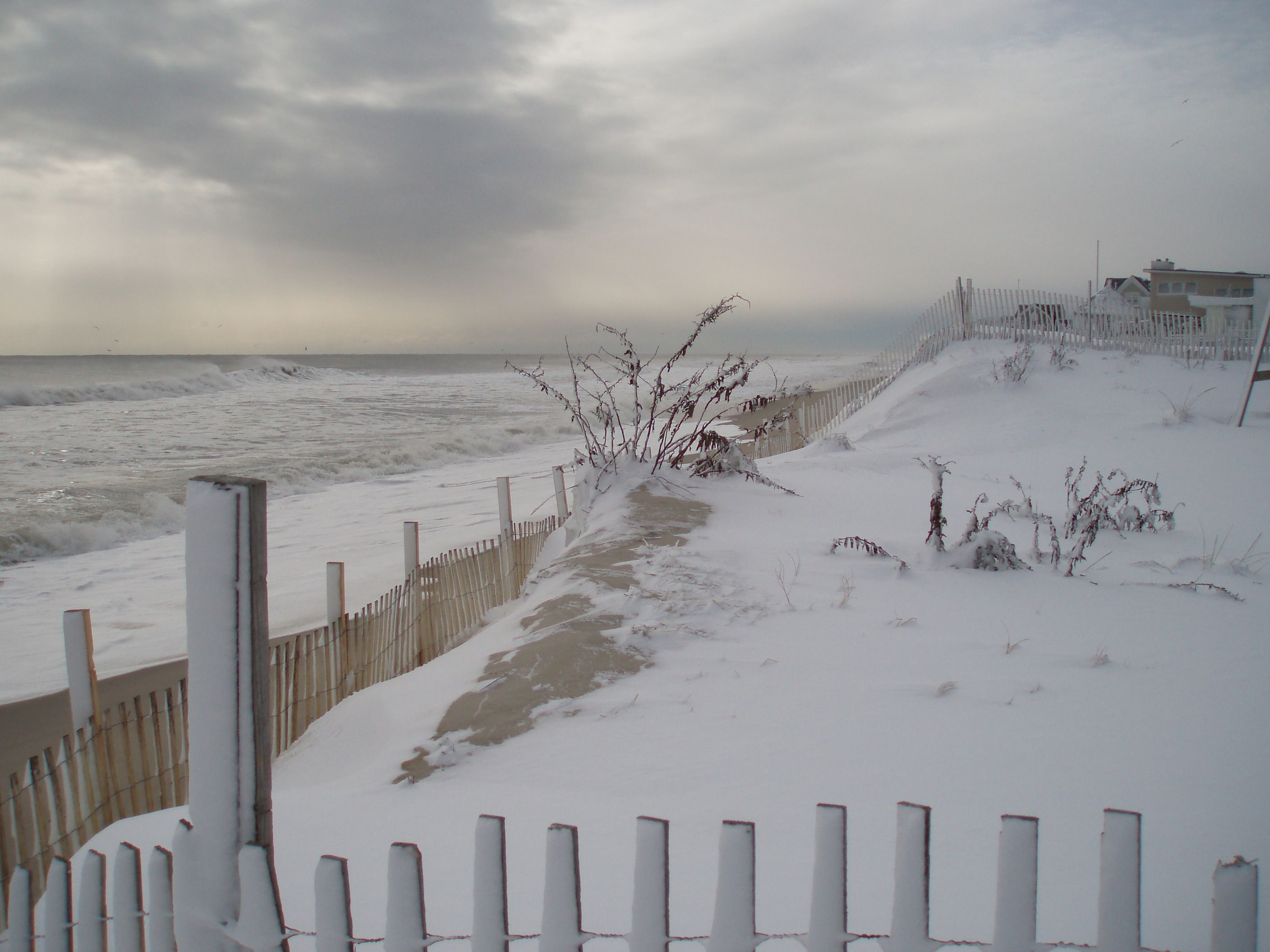 Visit A Snow Covered Beach