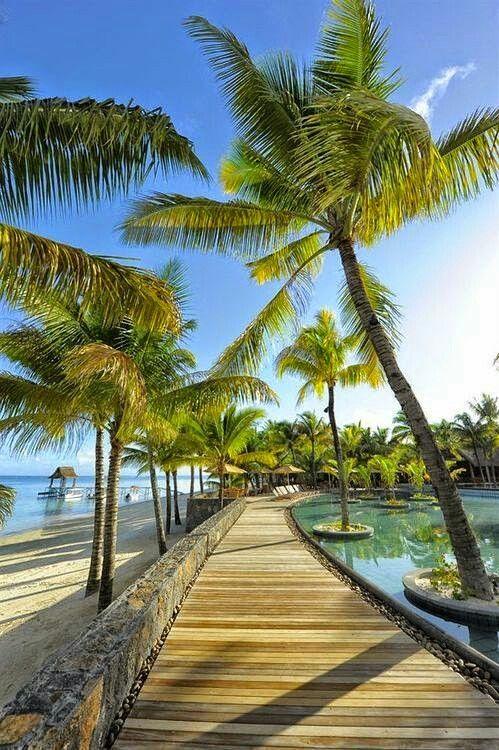 Path________Mauritius Island