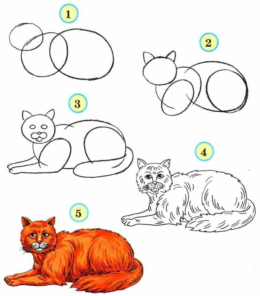 Картинки кошек карандашом для детей