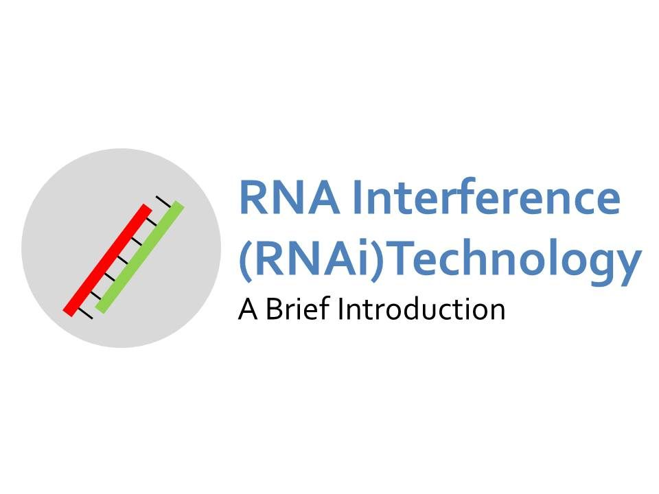 RNAi Technology | Genetically Engineered Crops at the National Academy of Sciences