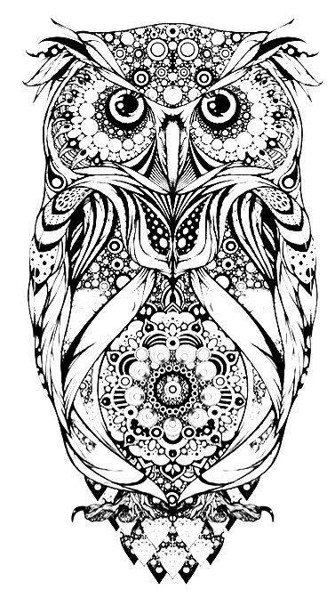 Pin von Amanda Rudolph auf Tattoo ideas | Pinterest | Eule ...