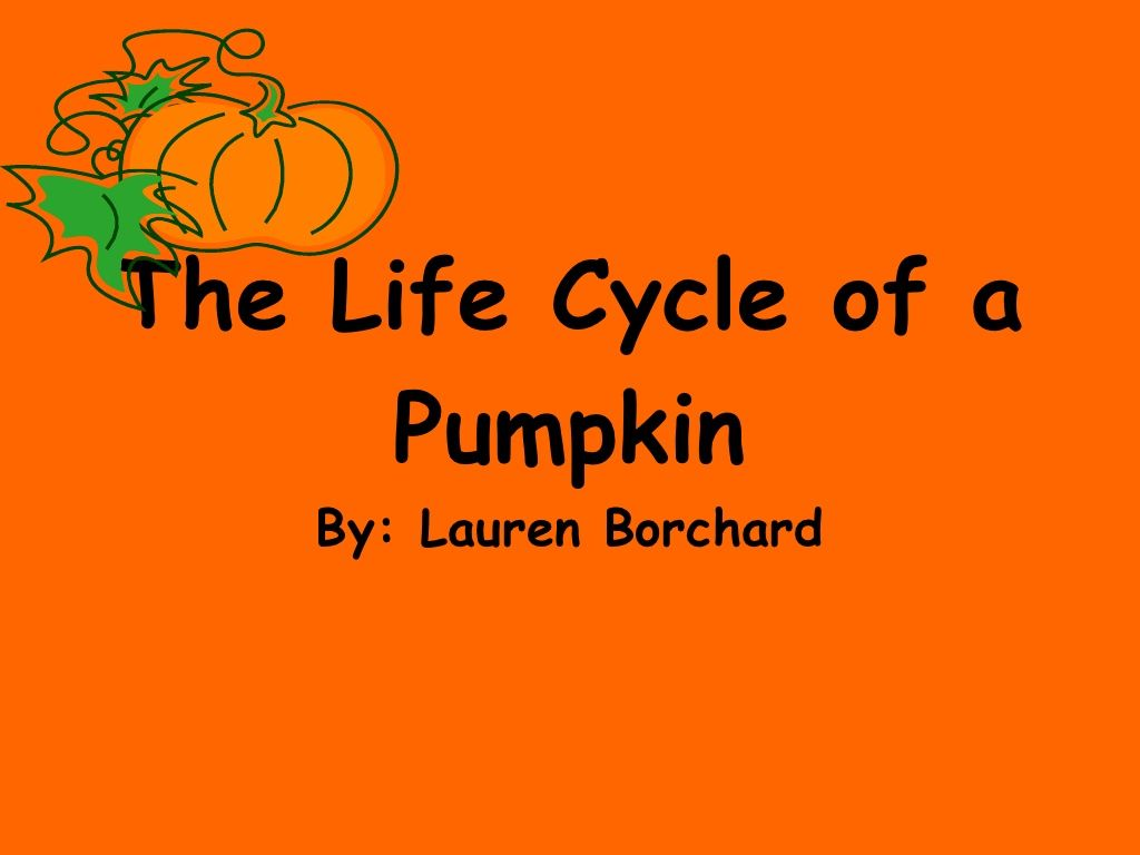 The Life Cycle Of A Pumpkin With Images
