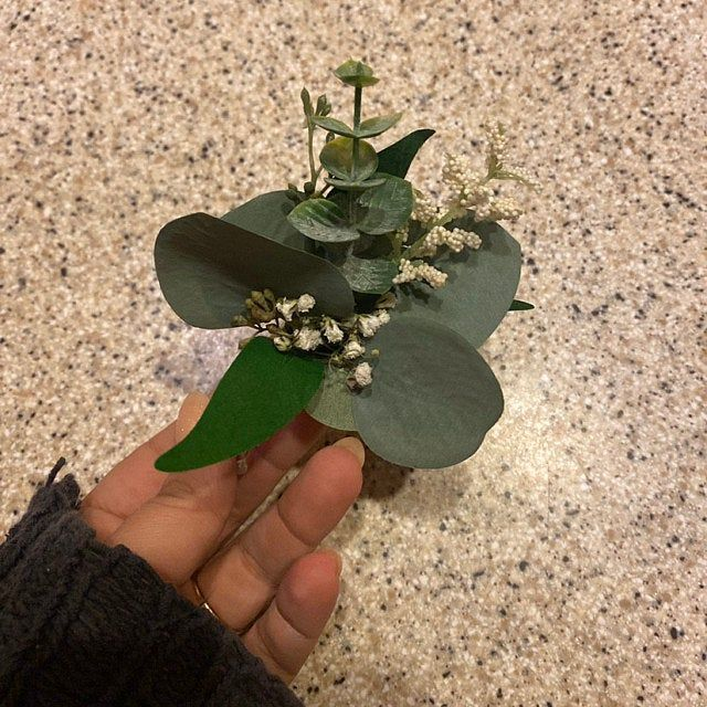 Photo of Dried eucalyptus wreath, everyday wreath, green wreath, wreath shape base, entry wreath, preserved wreath, silver dollar eucalyptus, entrance