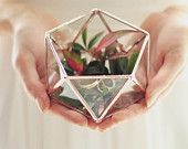 Glass Geometric Terrarium. I want this so badly.