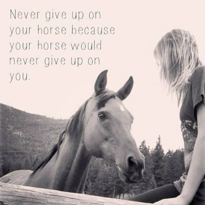 13 Quotes What Horse Riding Teaches You About Life Hastcitat Horse Djur