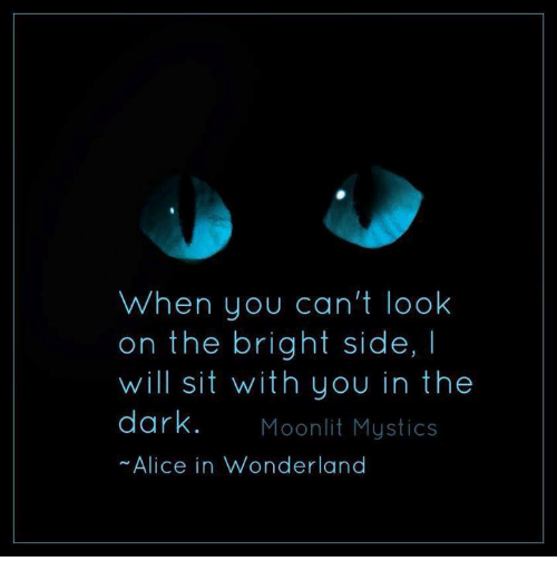 When You Can't Look on the Bright Side I Will Sit With You in the Dark Moonlit Mystics Alice in Wonderland   Dank Meme on ME.ME