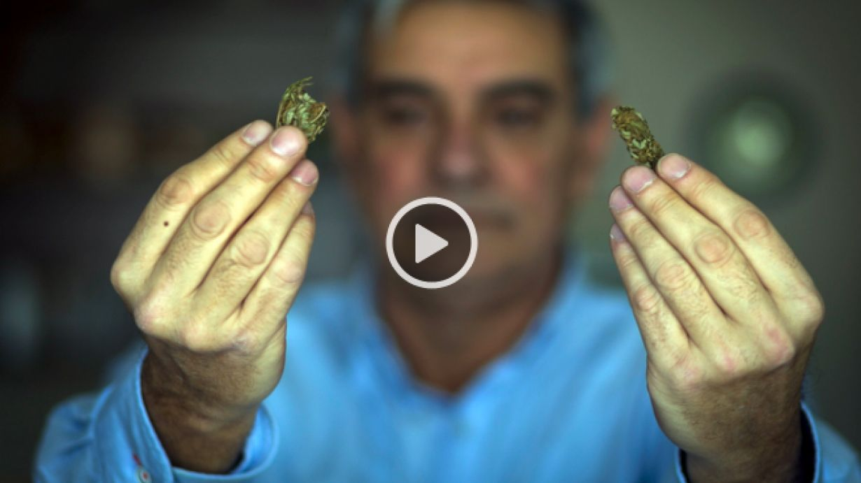 Diputado del PP con cáncer pide regular el Cannabis Medicinal (VIDEO) Si tu abuelo murió de cáncer, si tu padre murió de cáncer, si los cinco hermanos habéis tenido cáncer, si dos murieron por ello, si tú también ...