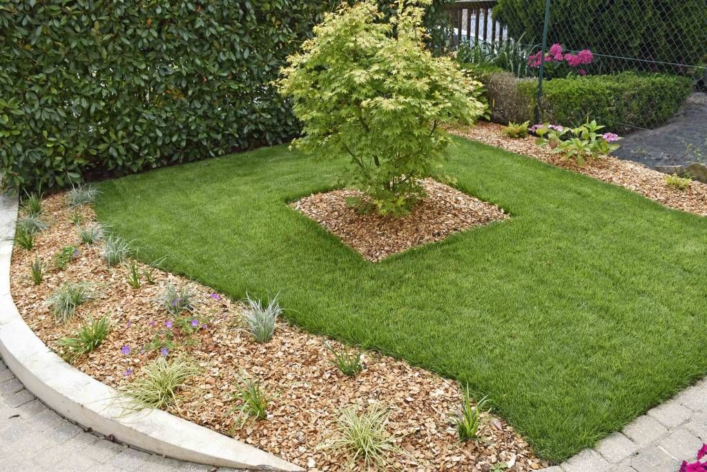 15 jardines sencillos y bonitos que puedes hacer for Jardines pequenos y bonitos