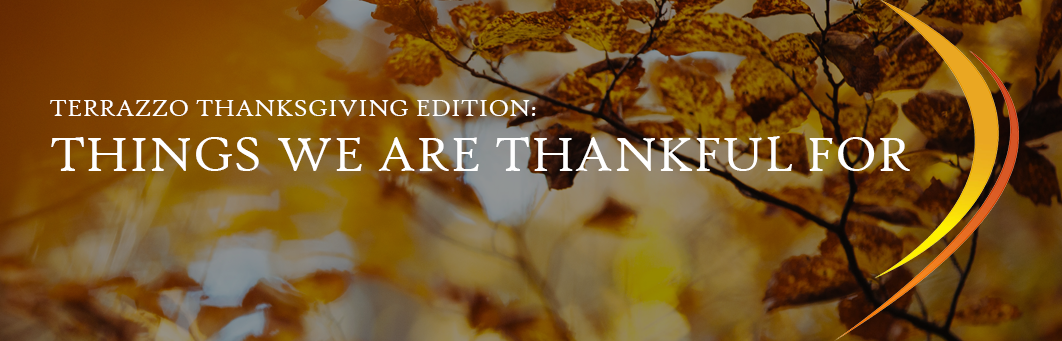 Terrazzo Thanksgiving Edition: Things We Are Thankful For  www.doyledickersonterrazzo.com