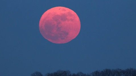 Pink (Egg) Moon