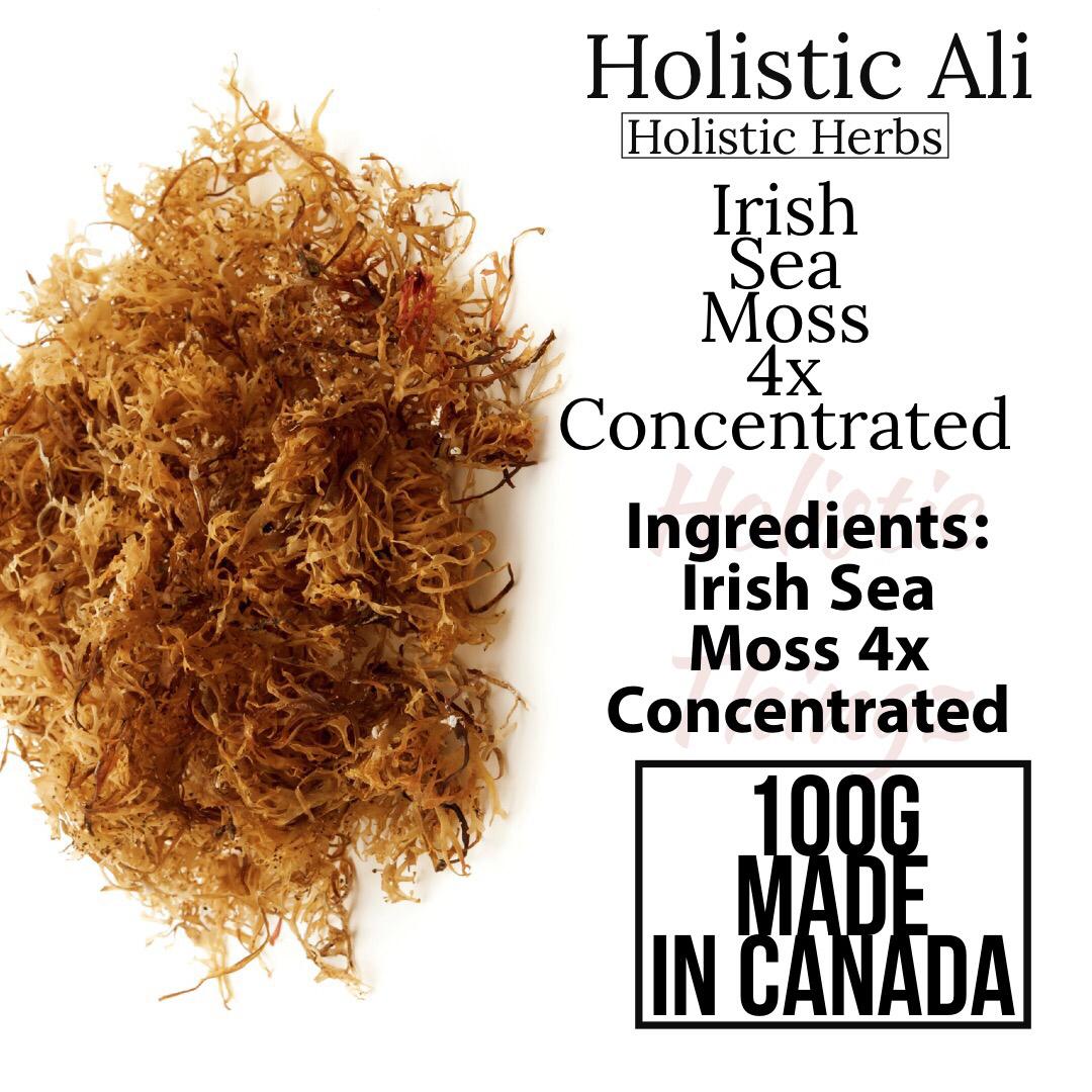 Irish Sea Moss 4x Concentrate Extract 100g #irishsea