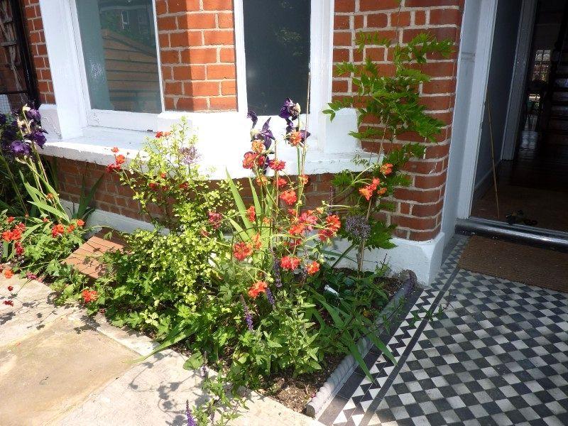 Related image | Front garden design, House front, Garden ...