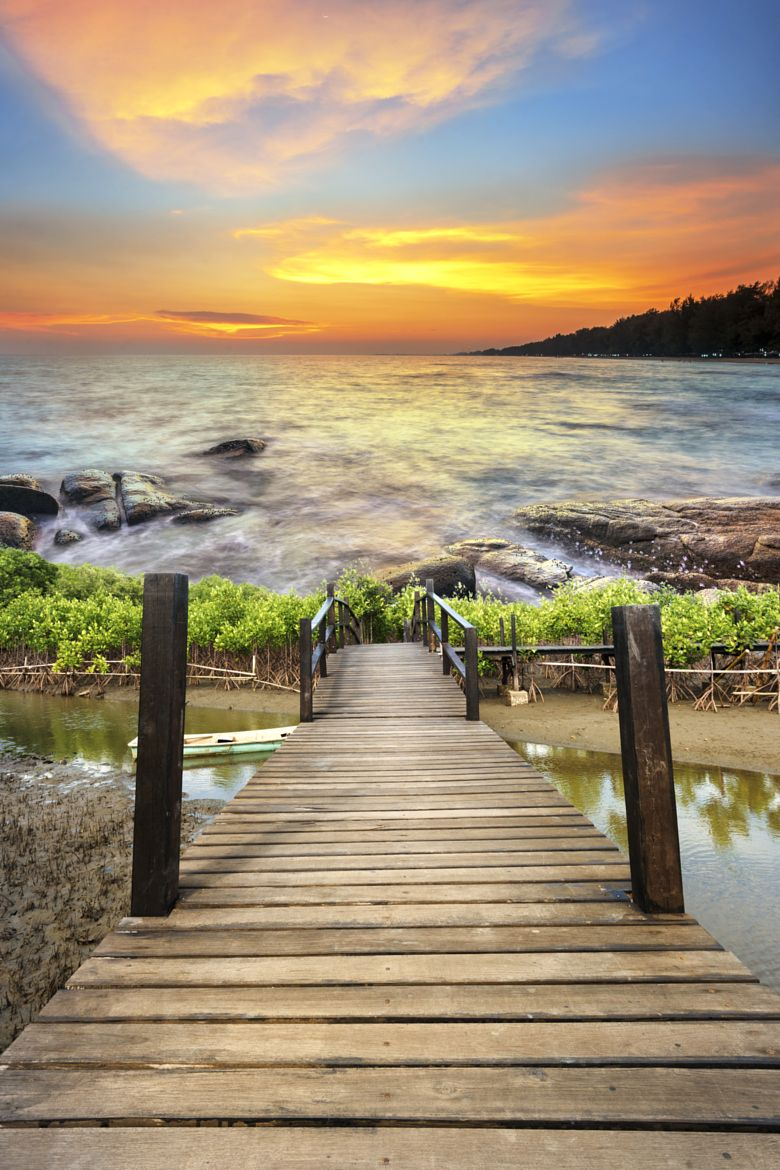 Wood Bridge In The Mangrove Forest To Sea Thailand By