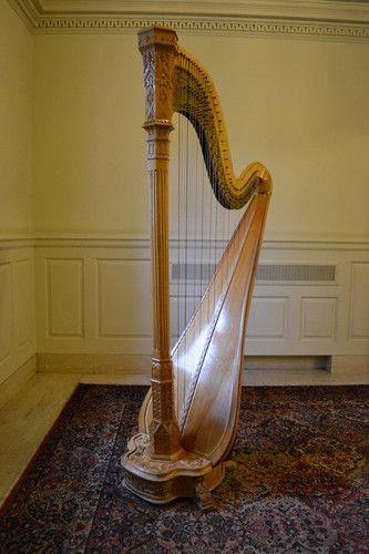Buy A Harp >> I Ll Strive To Raise Enough Money To Buy An Excellent Like New
