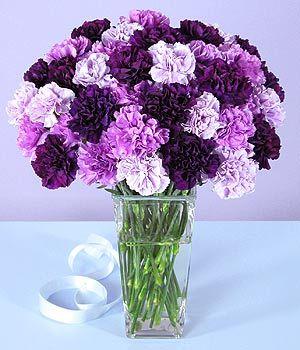 preciosas flores lilas