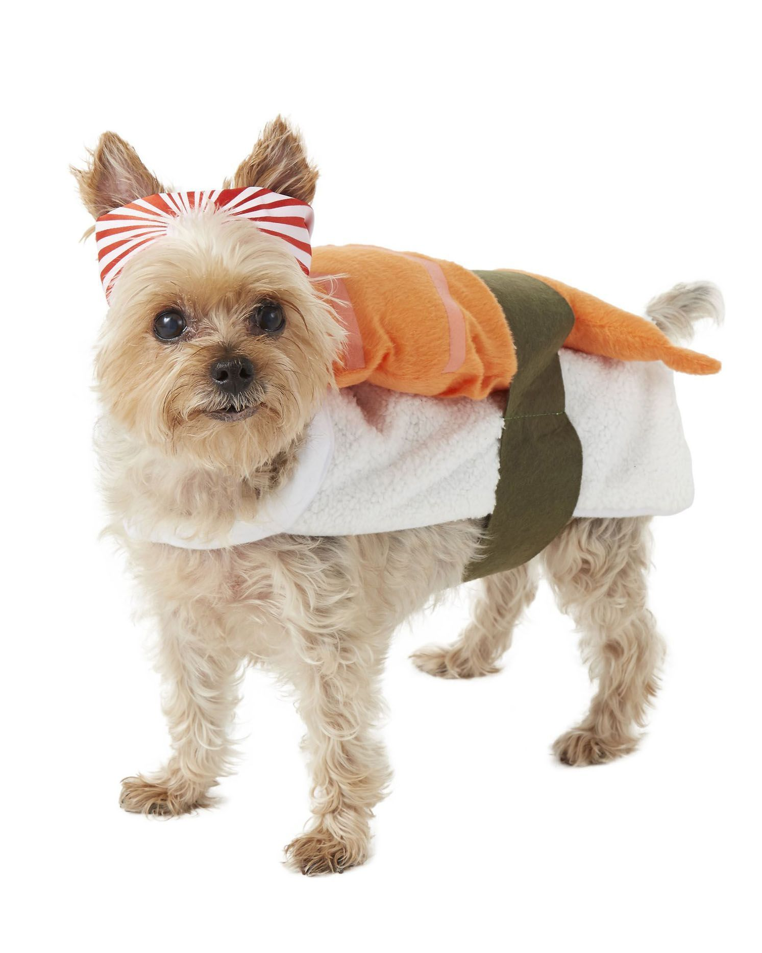 S-M-L dog Halloween costume for pups halloween pet clothing holiday dog gear