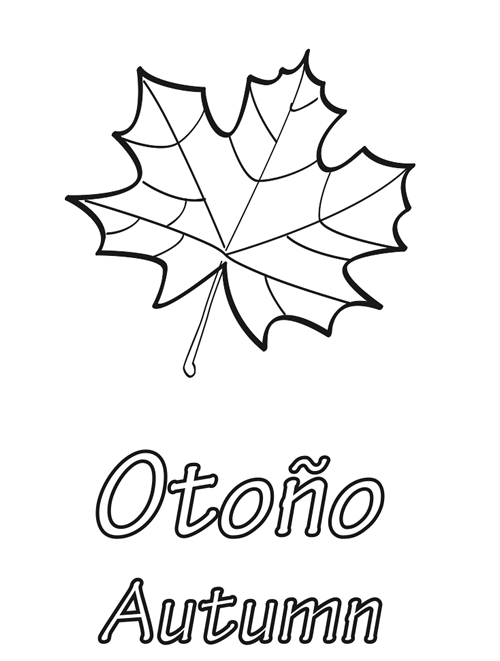Hojas de otoño para colorear | Homeschool | Pinterest | Education ...