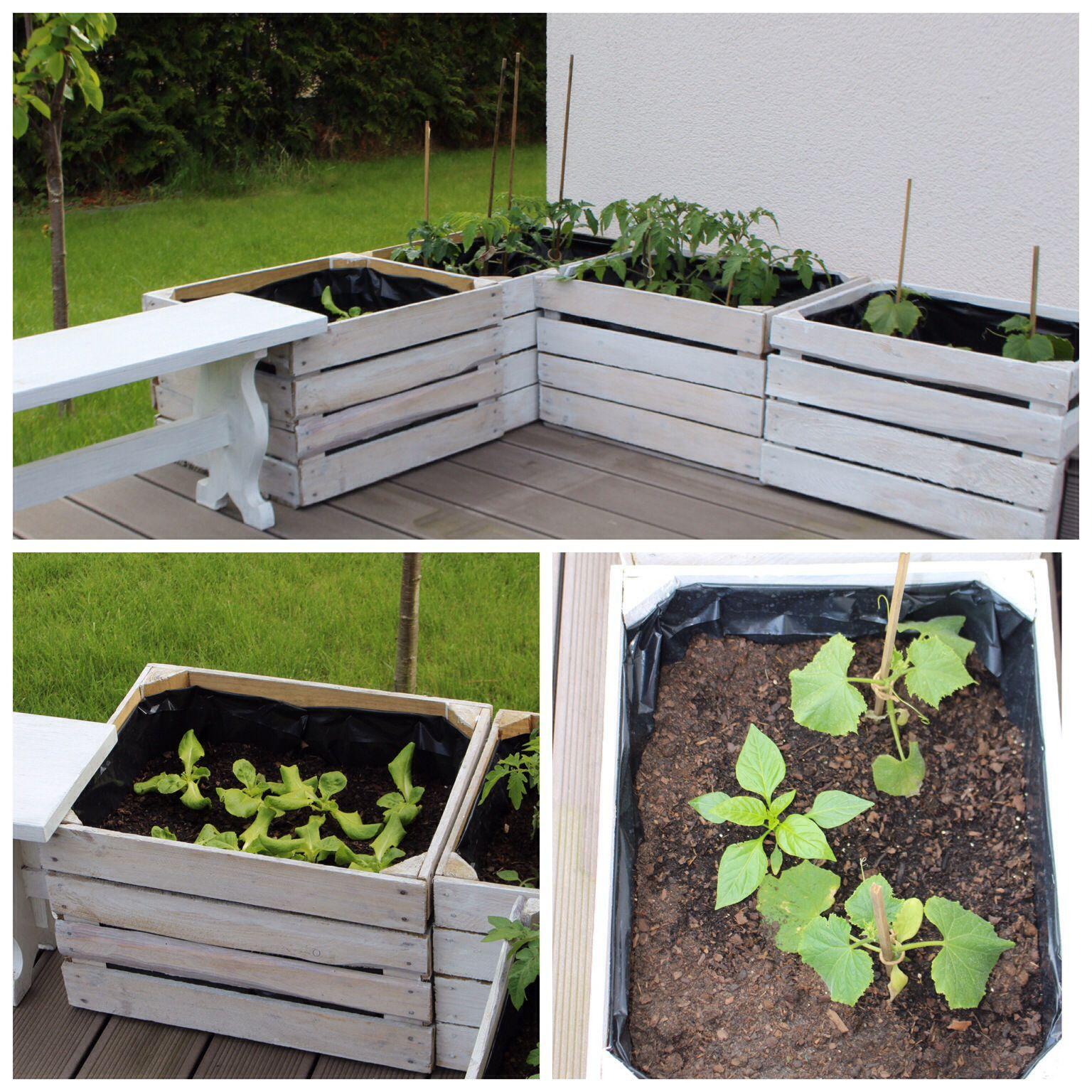 Alte Apfelkisten Hochbeet Gemüse Upcycling Garten