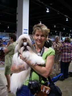 Find The Best Dog Breeder Puppies And Shih Tzu Champions Services
