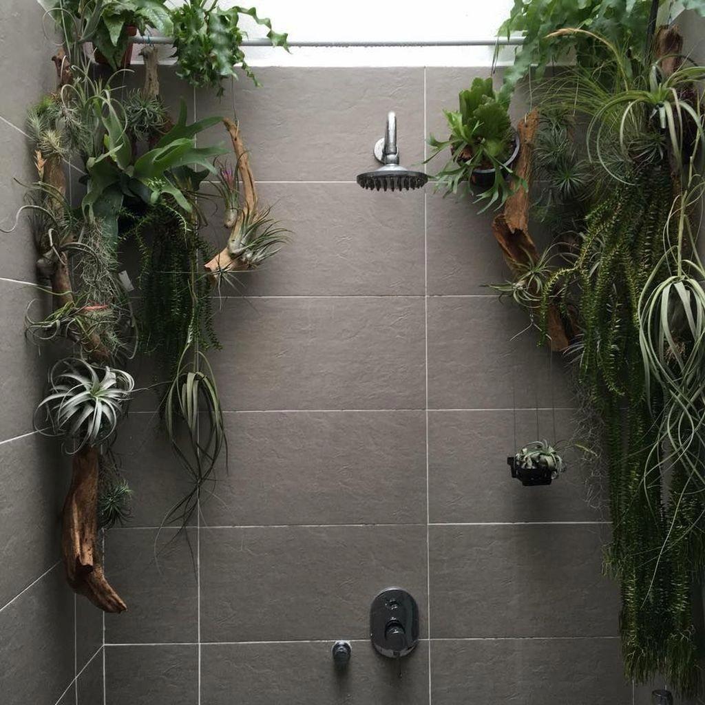30 Enchanting Shower Decor Ideas For Tiny Bathroom Trenduhome Shower Plant Bathroom Plants Plants Plant decor for bathroom