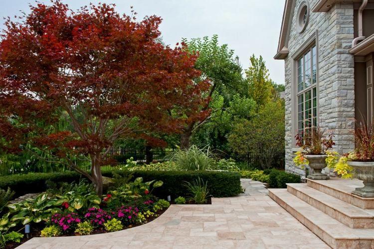aménagement petit jardin devant la maison – quels arbres
