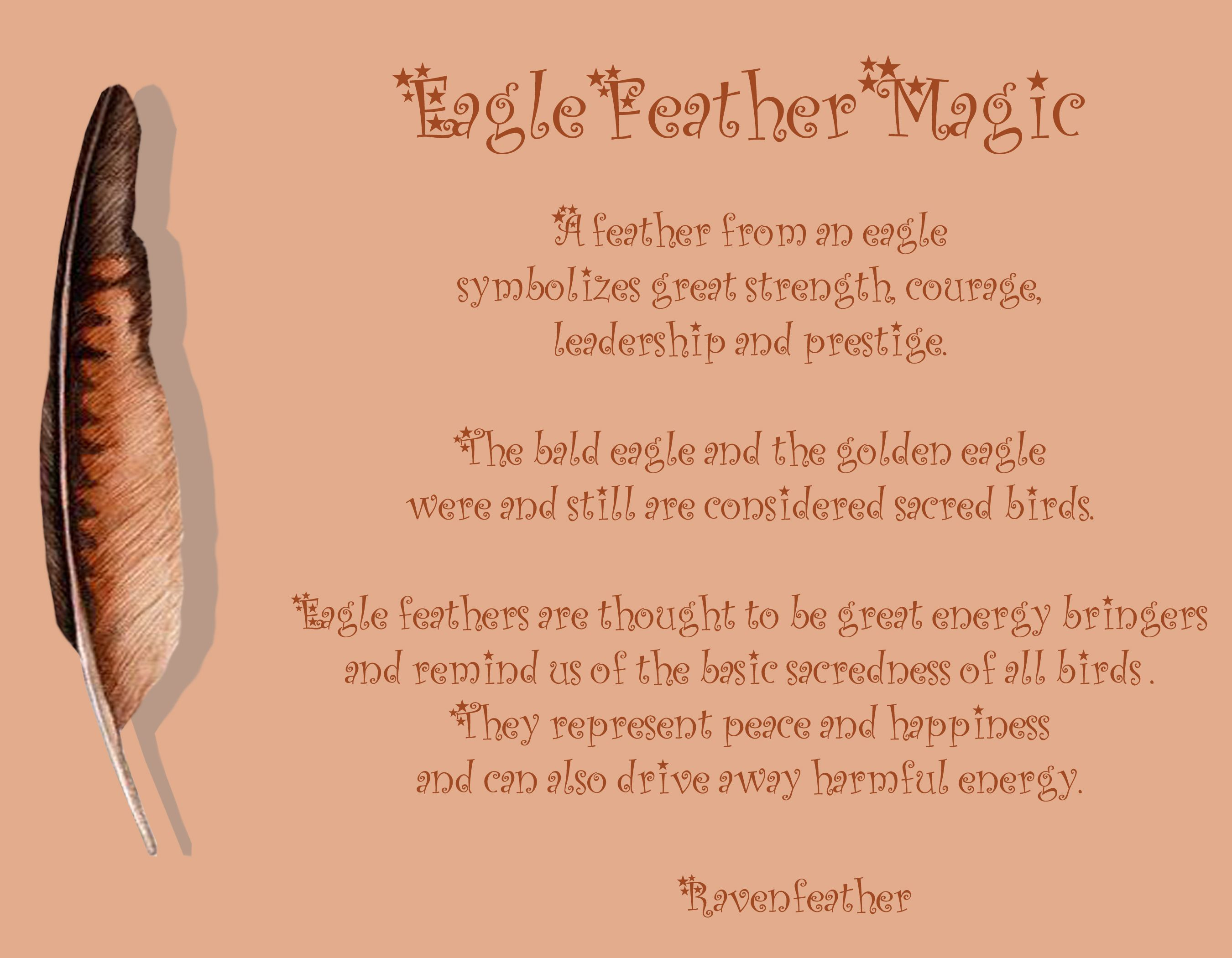 Eagle Feather Magic Please Check Your Local And Federal