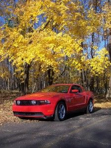 Meet Steve, a NJStangers Mustang Owner....read more about him and his sweet