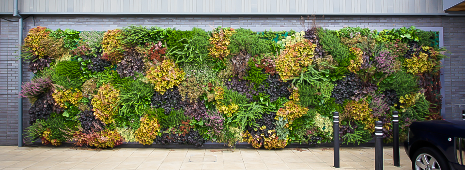 Living Wall System Living Wall Planter Green Wall System 400 x 300