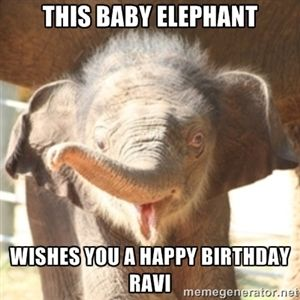This Baby Elephant Wishes You A Happy Birthday Ravi Baby Elephant Elephant How Big Is Baby Baby Elephant