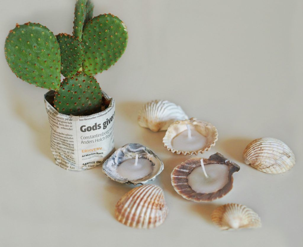DIY candles from seashells