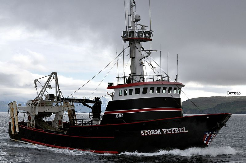 """F/V """"Storm Petrel"""" Built in 1980, this Trawler/Crabber is 123 ft long."""