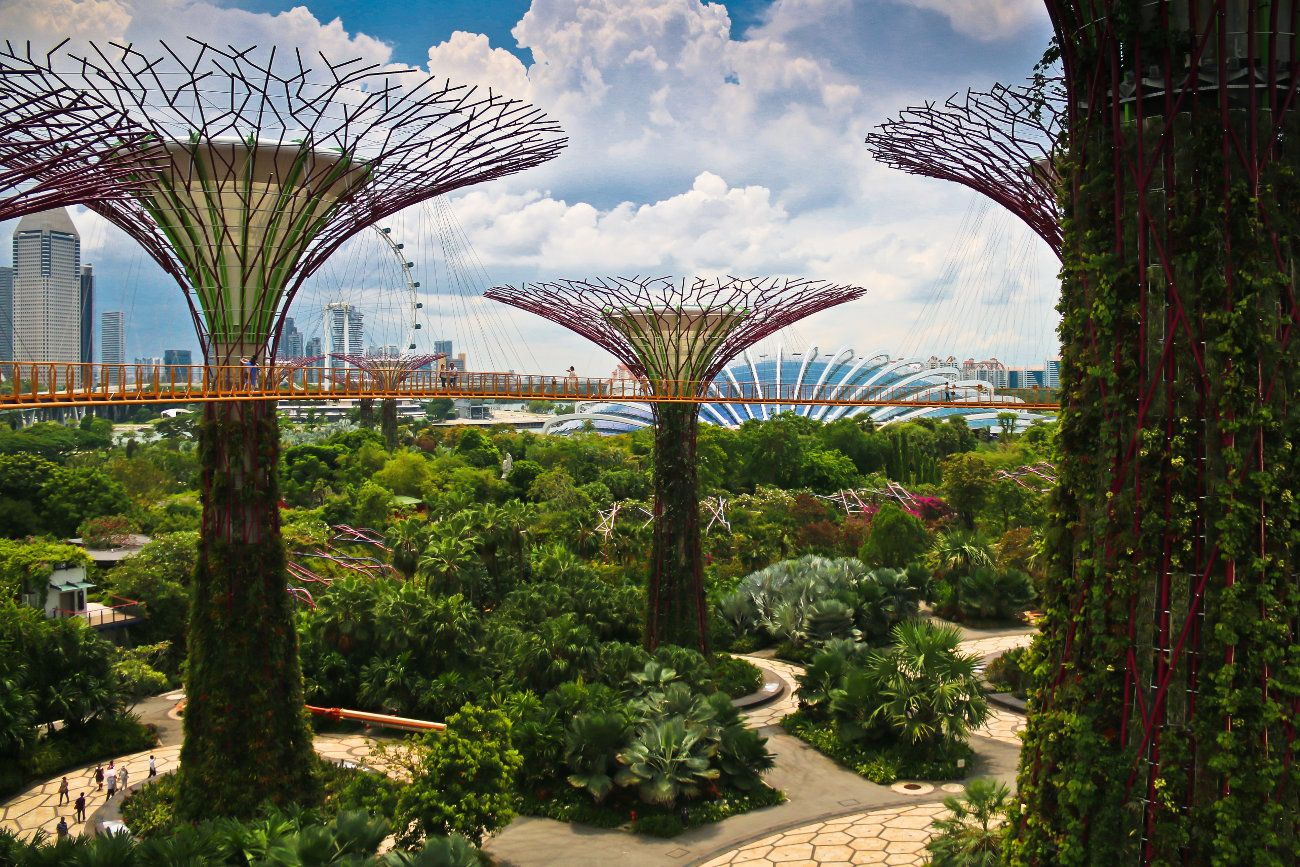 Singapore S Incredible Gardens By The Bay Gardens By The Bay