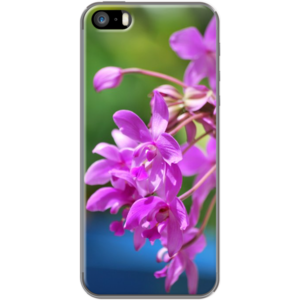 #Fresh #Purple By #tropicalsv for Apple #iPhone 5/5s #TheKase