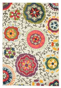 All Rugs Rugvista