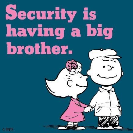 Security Is Having A Big Brother Brother Birthday Quotes Big Brother Quotes Brother Sister Quotes