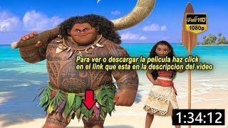 Moana Pelicula Completa En Español Latino Youtube Moana Película Moana Película Completa Películas Gratis