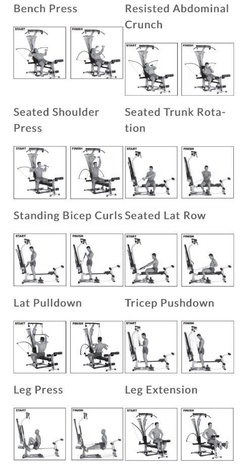 Bowflex Workout Routine Schedule Chart