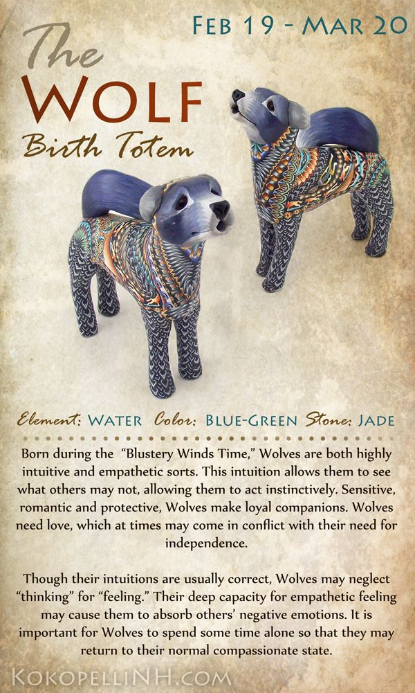 Native American Wolf Symbolism Birth Totem Animal Random