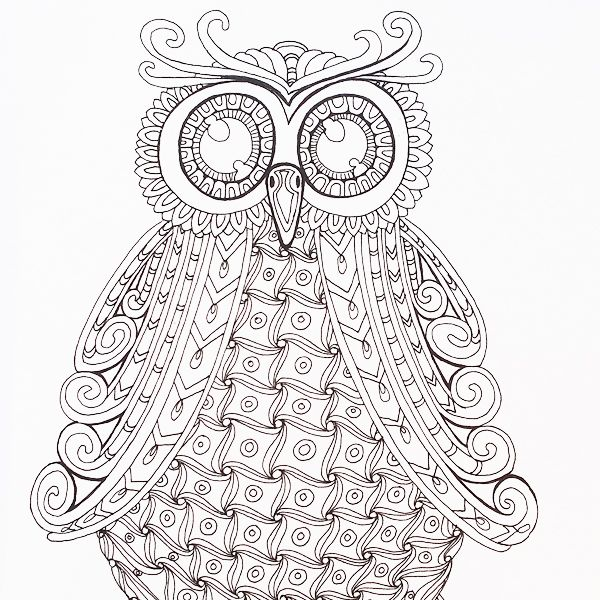 A beautiful owl crying out to be coloured in - Color Me Happy, part ...